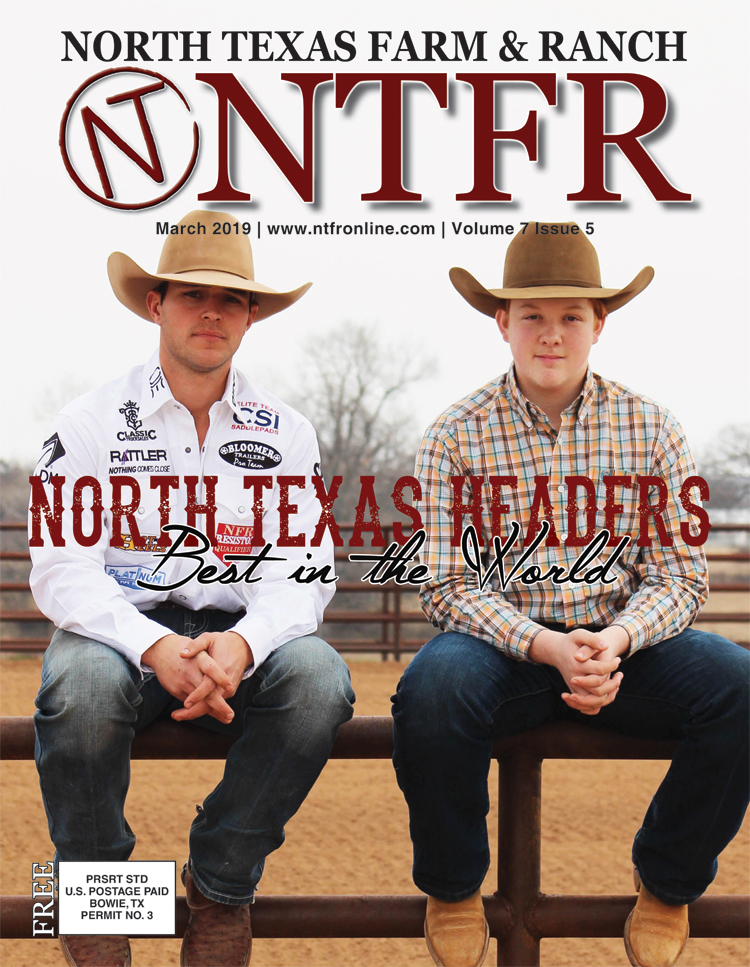 NTFR_March 2019